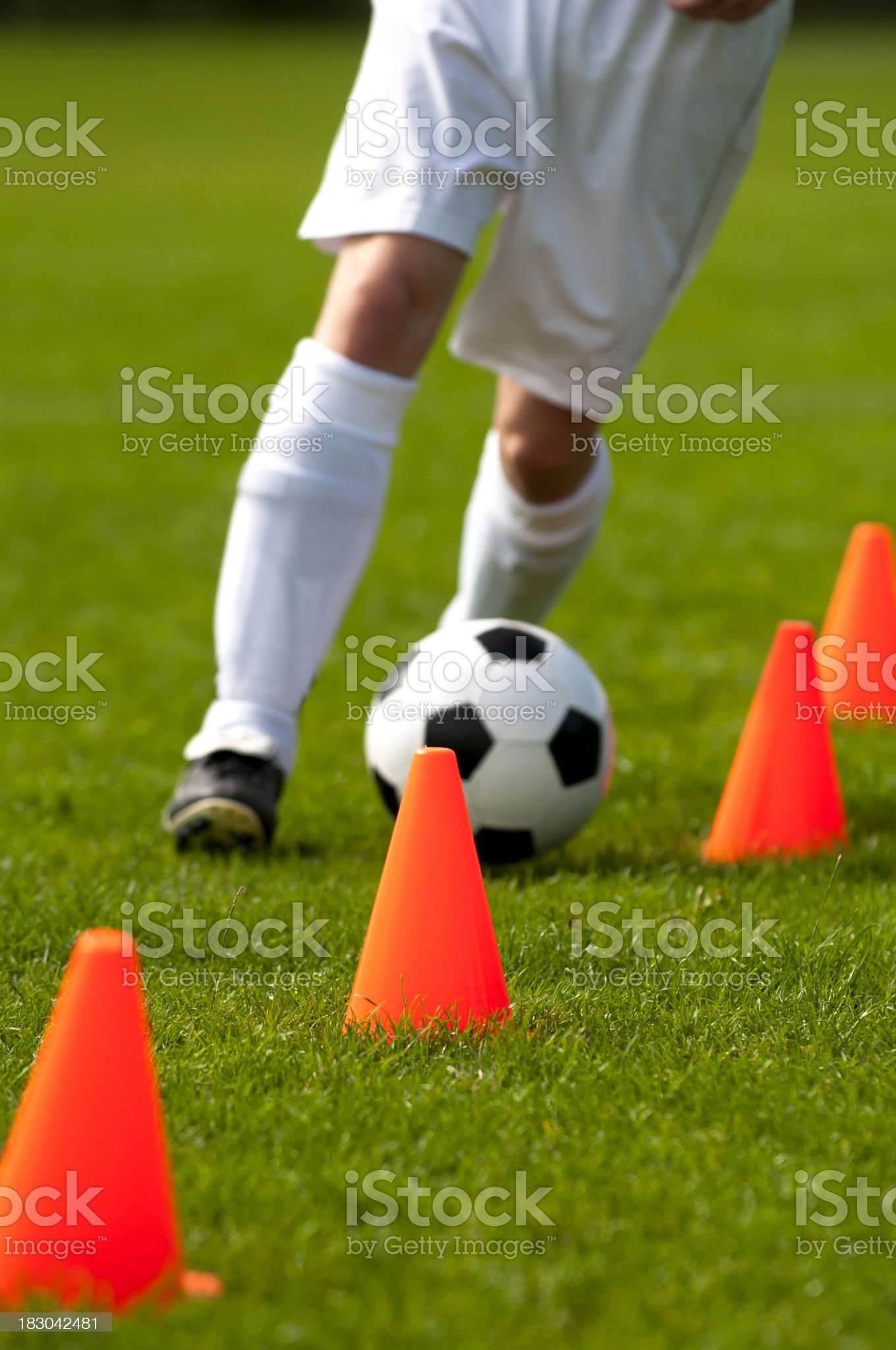 Soccer training with football and red cones on the field royalty-free stock photo