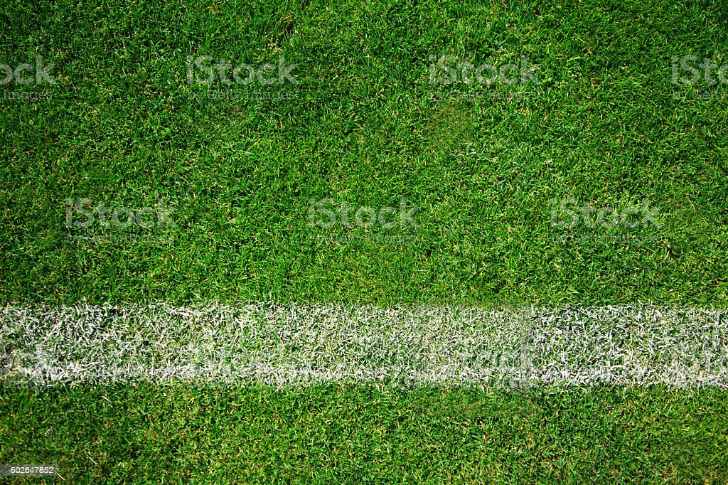 Soccer turf stock photo
