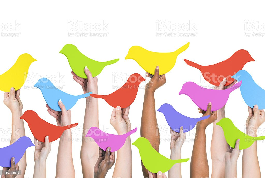 Social Network Birds royalty-free stock photo