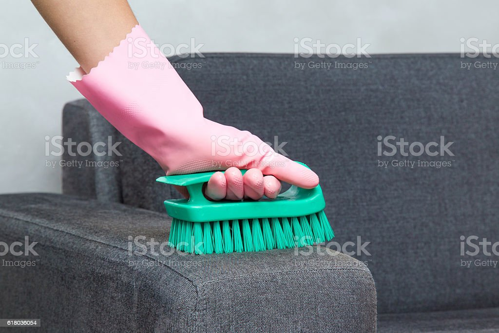 Sofa chemical cleaning with professionally brush. Upholstered furniture. stock photo