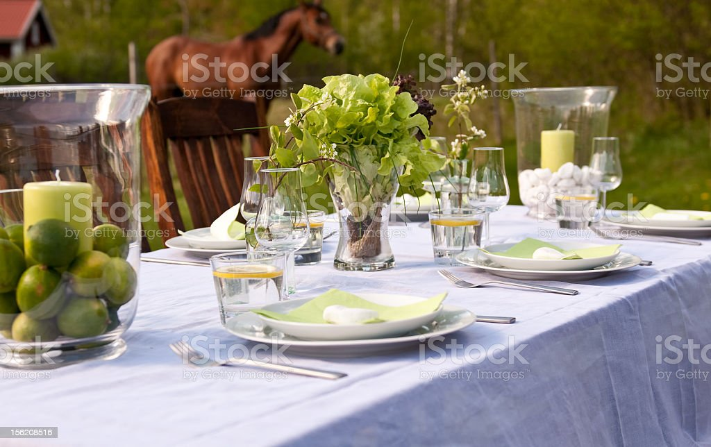 Soft and sweet outdoor dinner table setting in pasture stock photo