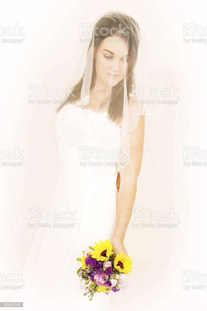 Soft Bride stock photo
