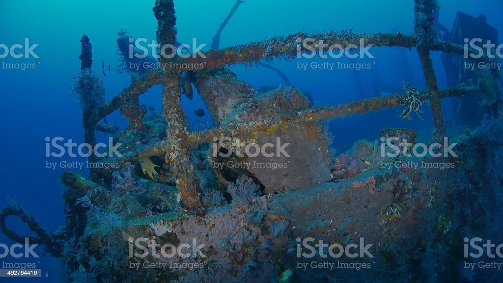 Soft coral grows on Boga Shipwreck, Bali, Indonesia stock photo