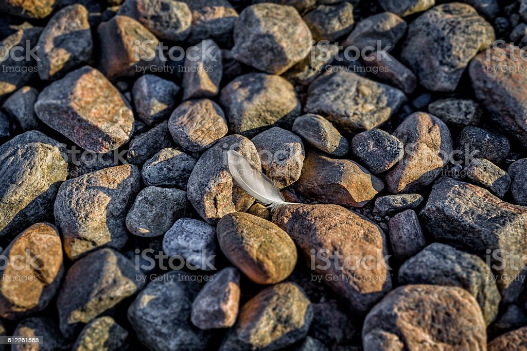 Soft feather against hard stones stock photo