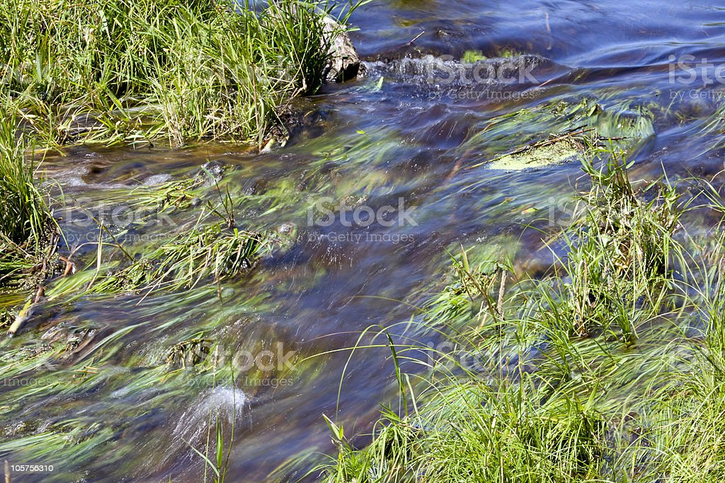 Soft Flowing Stream royalty-free stock photo