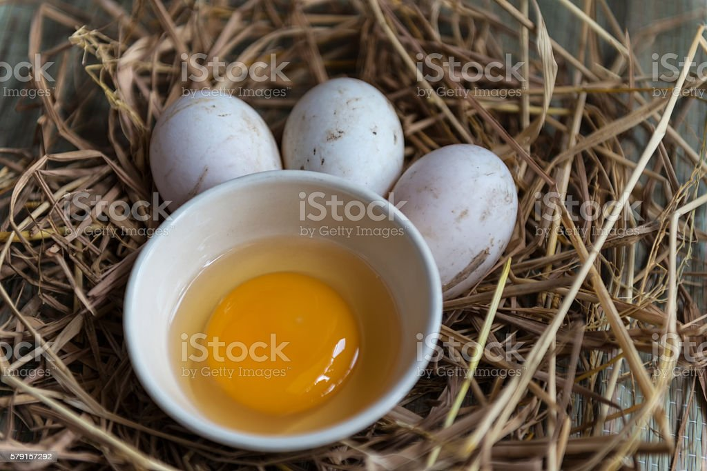 Soft focus Duck eggs in the straw. stock photo