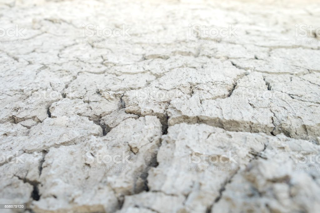Soft focus of The cracked earth/ground in drought, Soil texture and dry mud, Dry land. stock photo