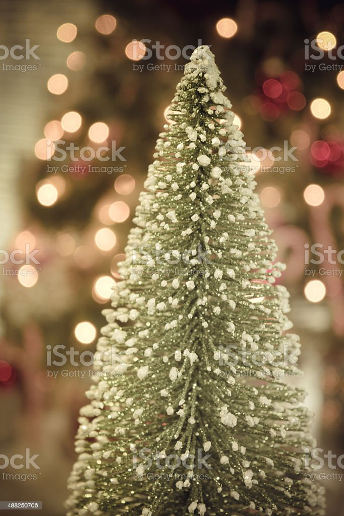 Soft Glow of Christmas Trees Merry and Bright stock photo