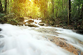 Soft light with deep forest waterfall