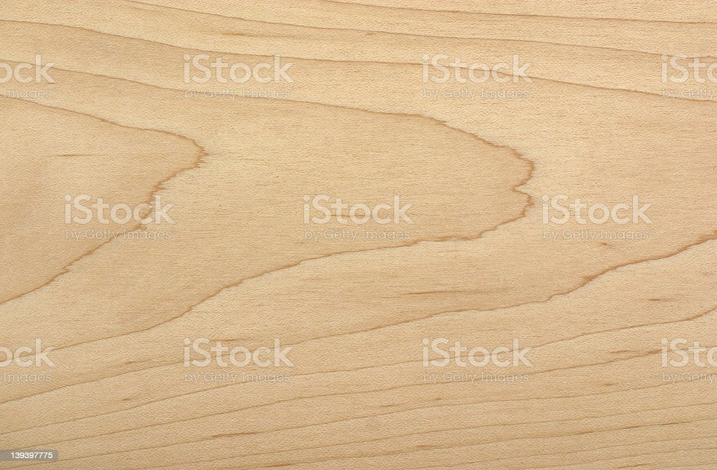 Soft Maple wood sample stock photo