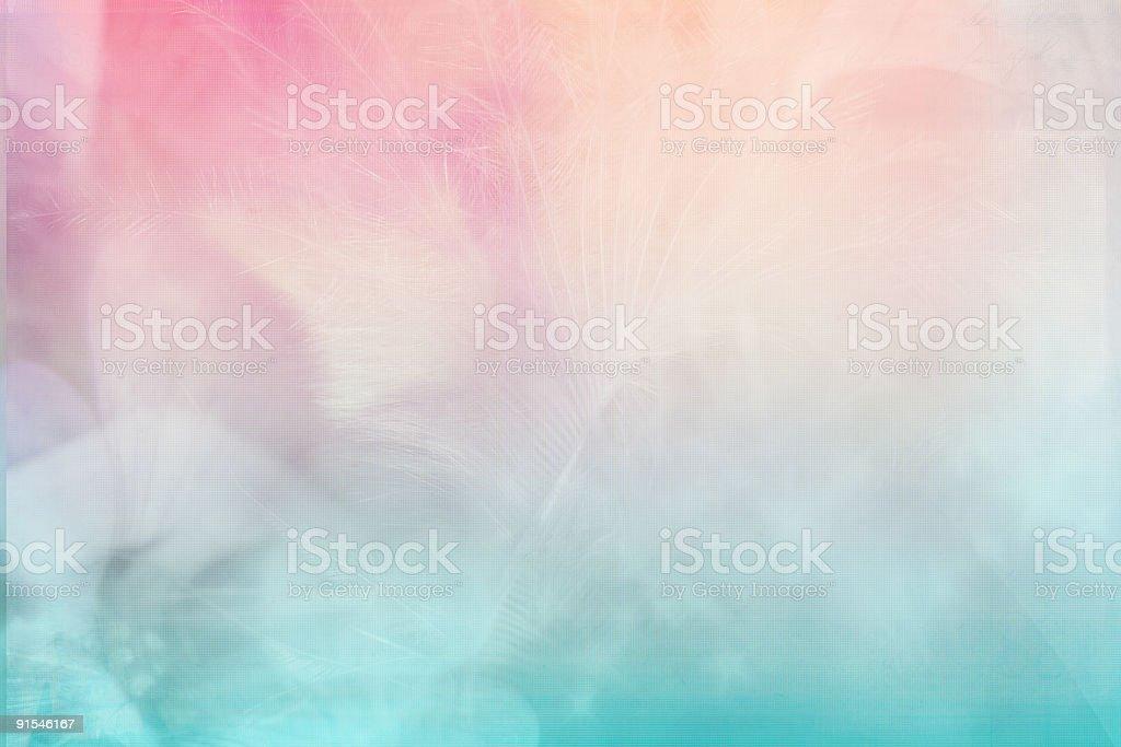 Soft Plus royalty-free stock photo