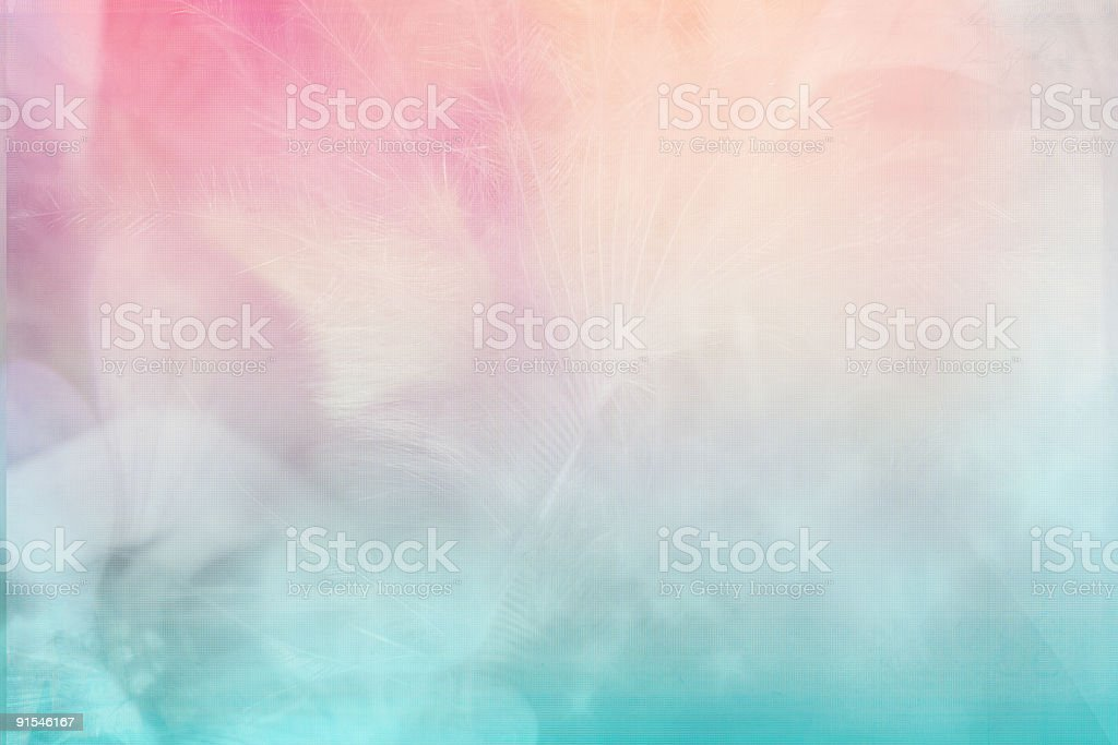 Soft Plus stock photo