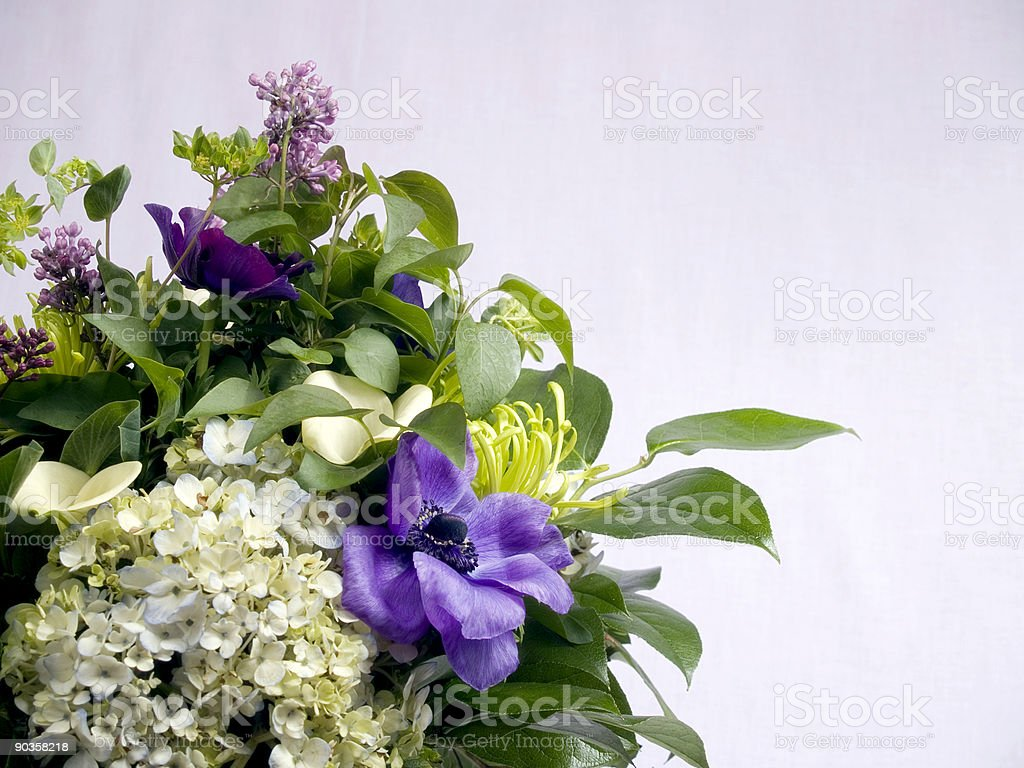 Soft Purple Flowers royalty-free stock photo