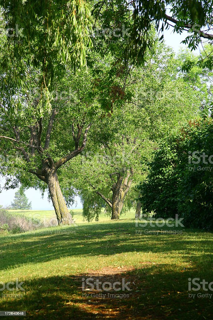 Soft Rolling Hills royalty-free stock photo