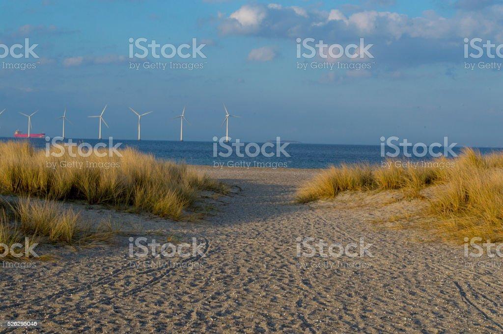 Soft sands of Amager Strandpark stock photo