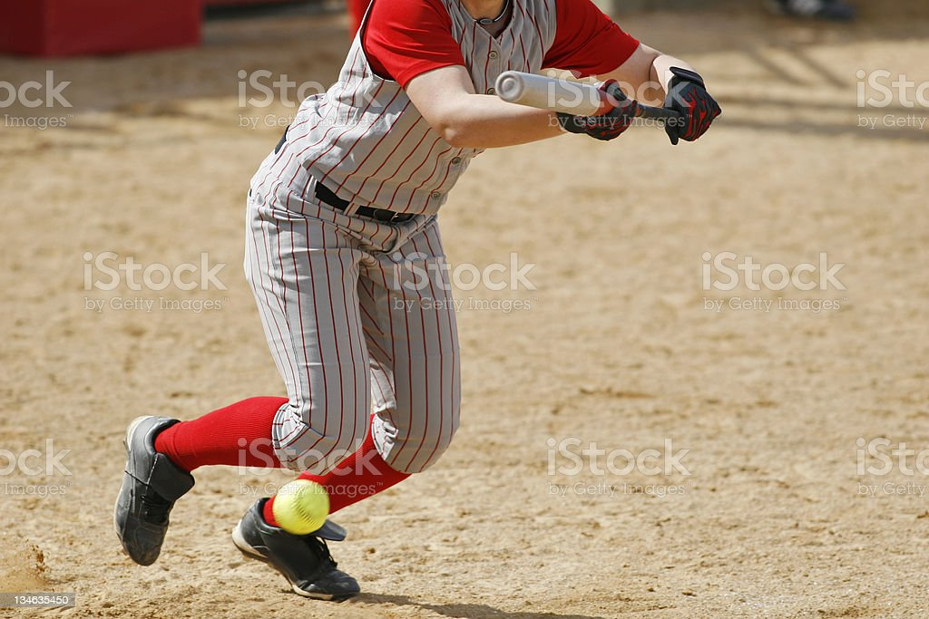 Softball Bunt royalty-free stock photo