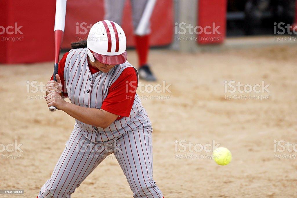 Softball Hitter royalty-free stock photo