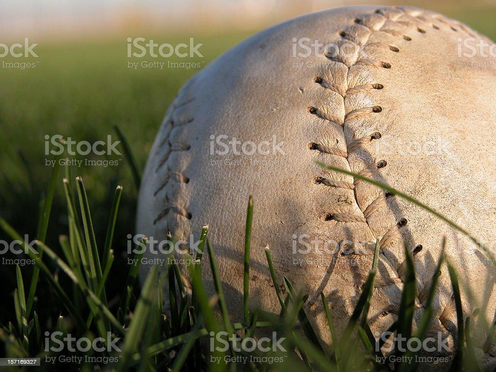 Softball in Grass Macro stock photo