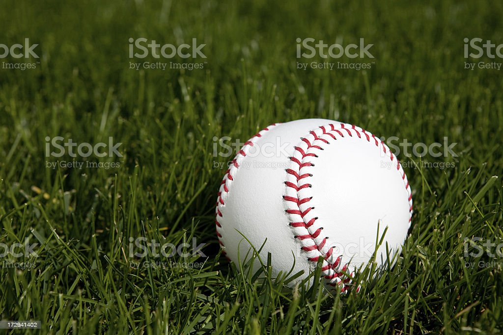 Softball on Grass stock photo