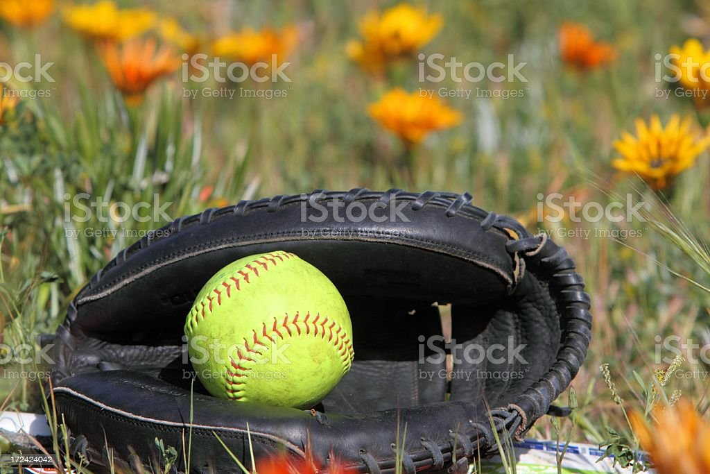 one softball inside a glove with a seasonal background