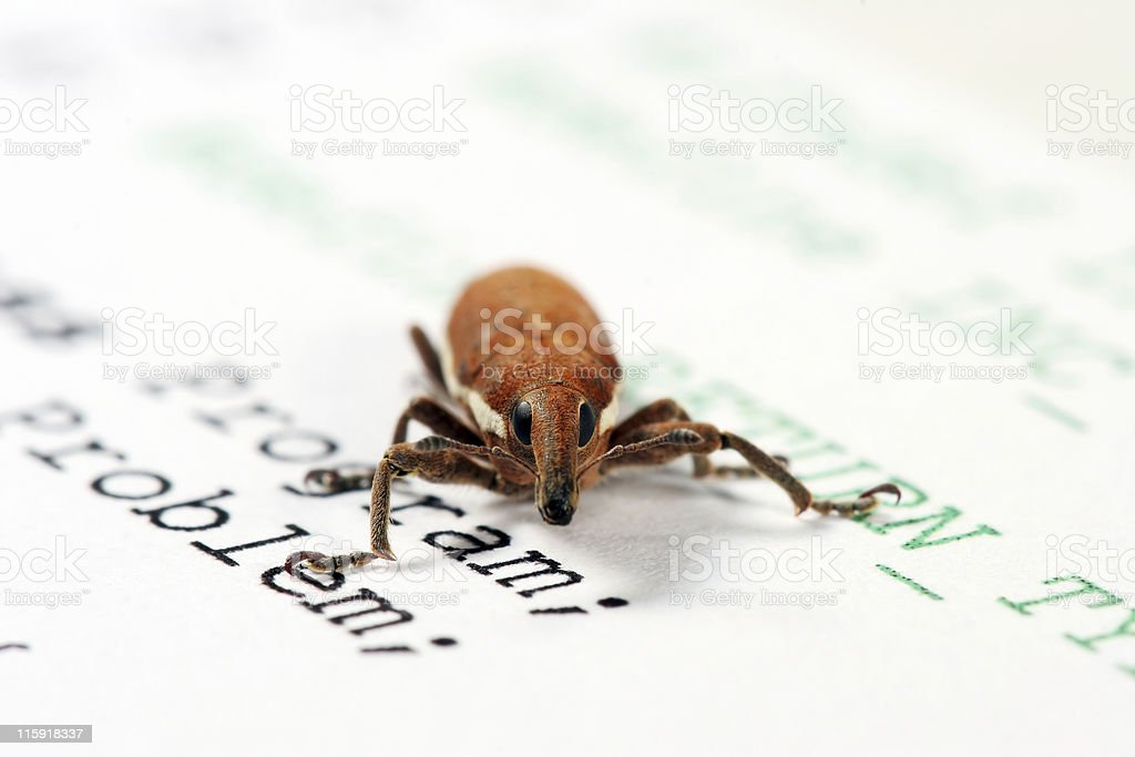 Software bug 03 royalty-free stock photo