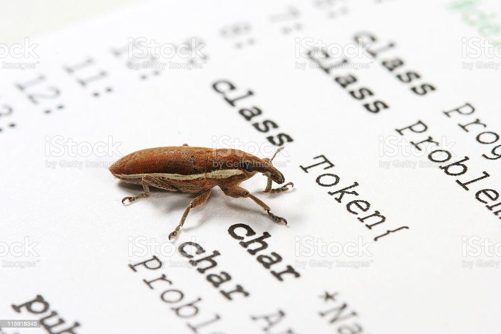 Software bug 04 royalty-free stock photo
