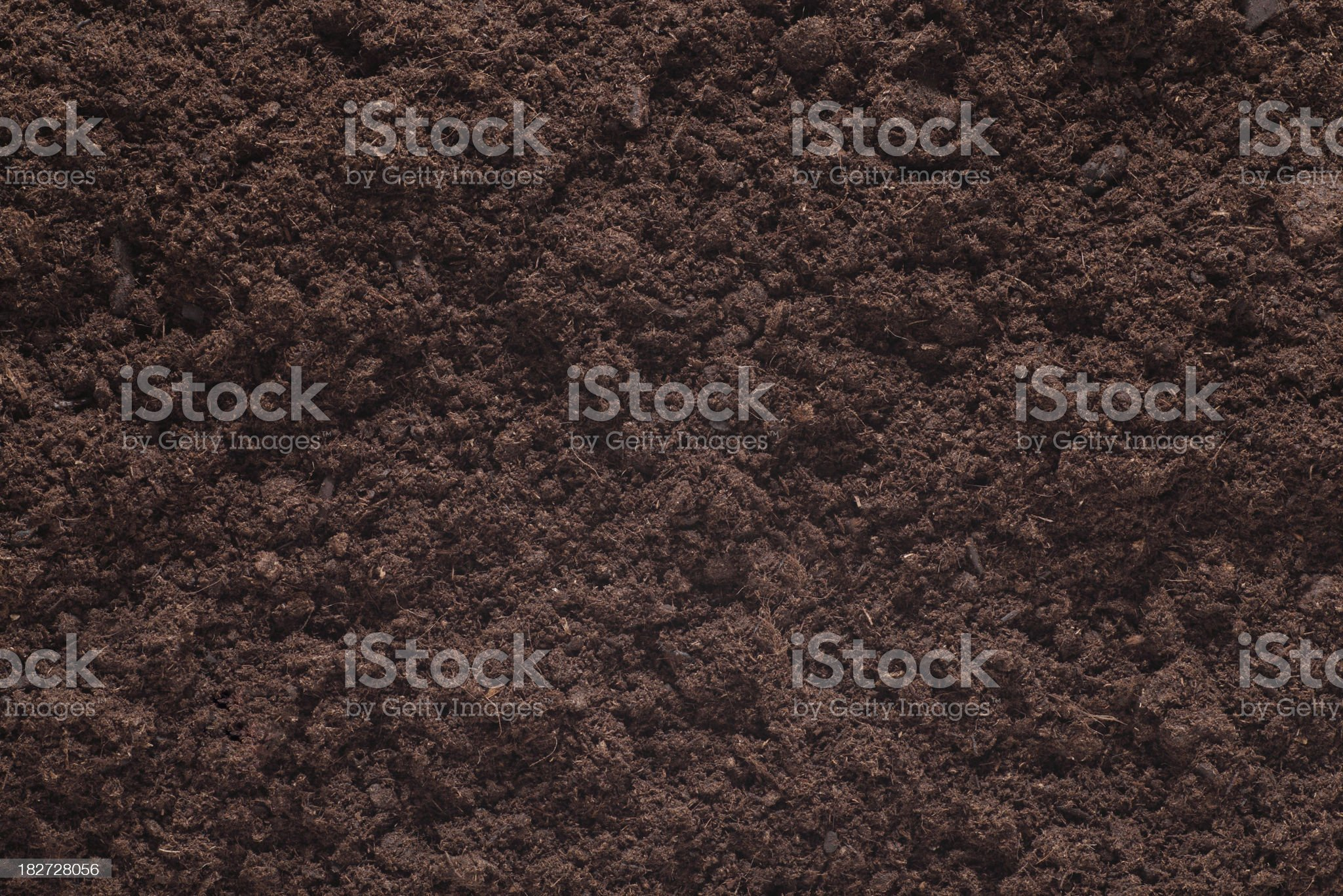 Soil Background. Brown Plant. royalty-free stock photo