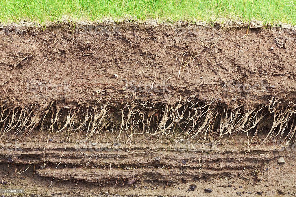 Soil cross section stock photo