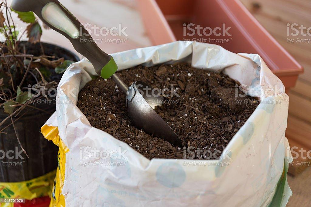 Soil for planting flowerpots stock photo