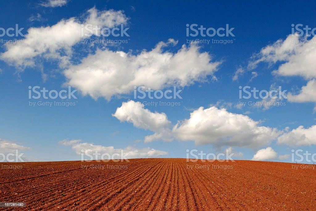 Soil I stock photo
