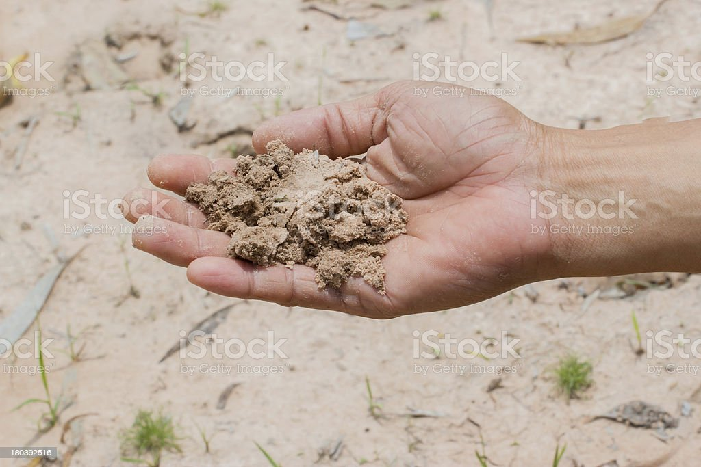 Soil in farmer hand royalty-free stock photo