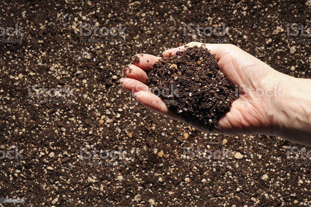 Soil in hand against humus soil background with copy space royalty-free stock photo
