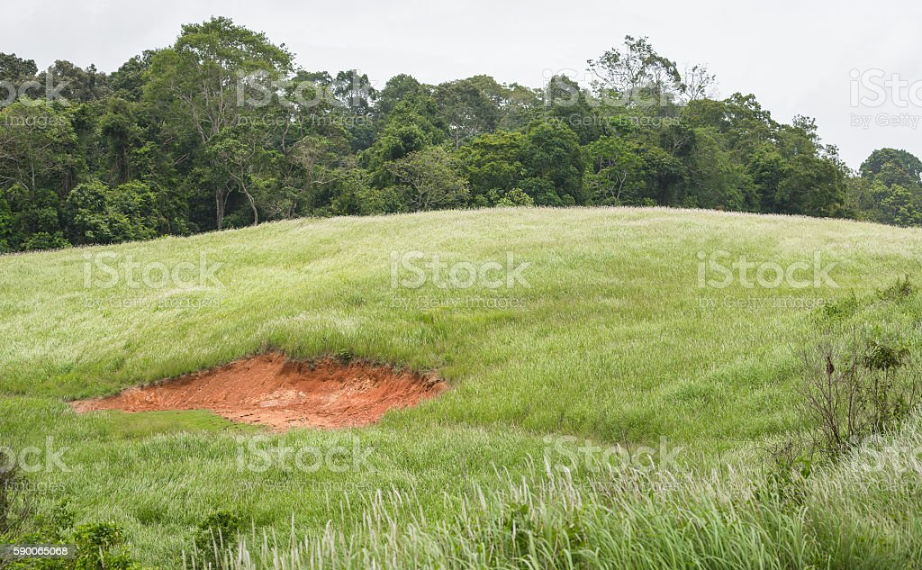 Soil marsh on hill stock photo