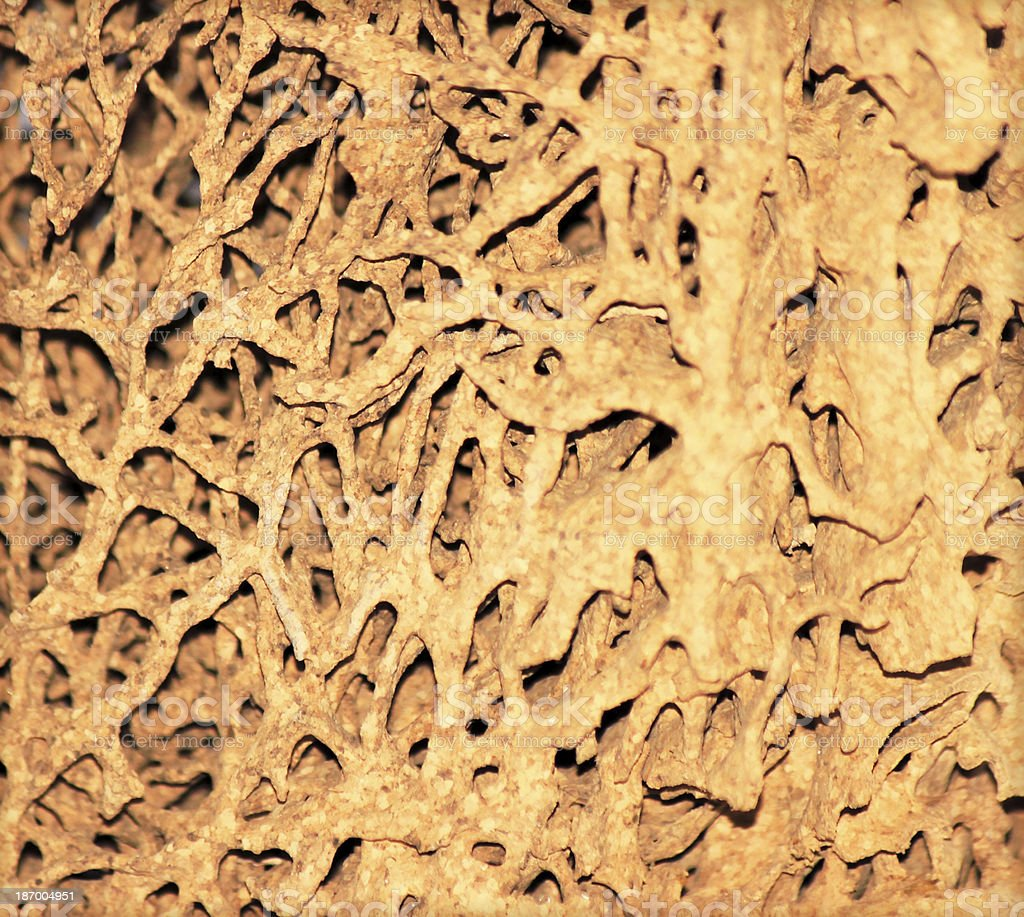 Soil of termite nests on a white background. royalty-free stock photo