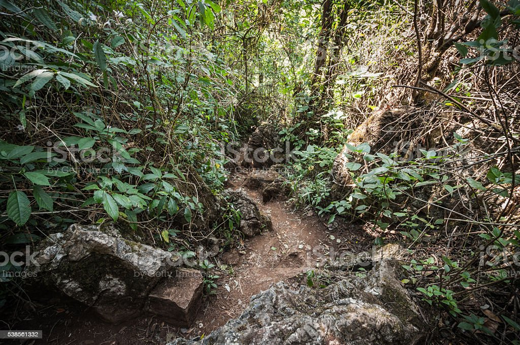 Soil path on mountain  landscape stock photo