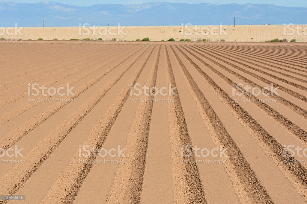 Soil prepared for planting stock photo