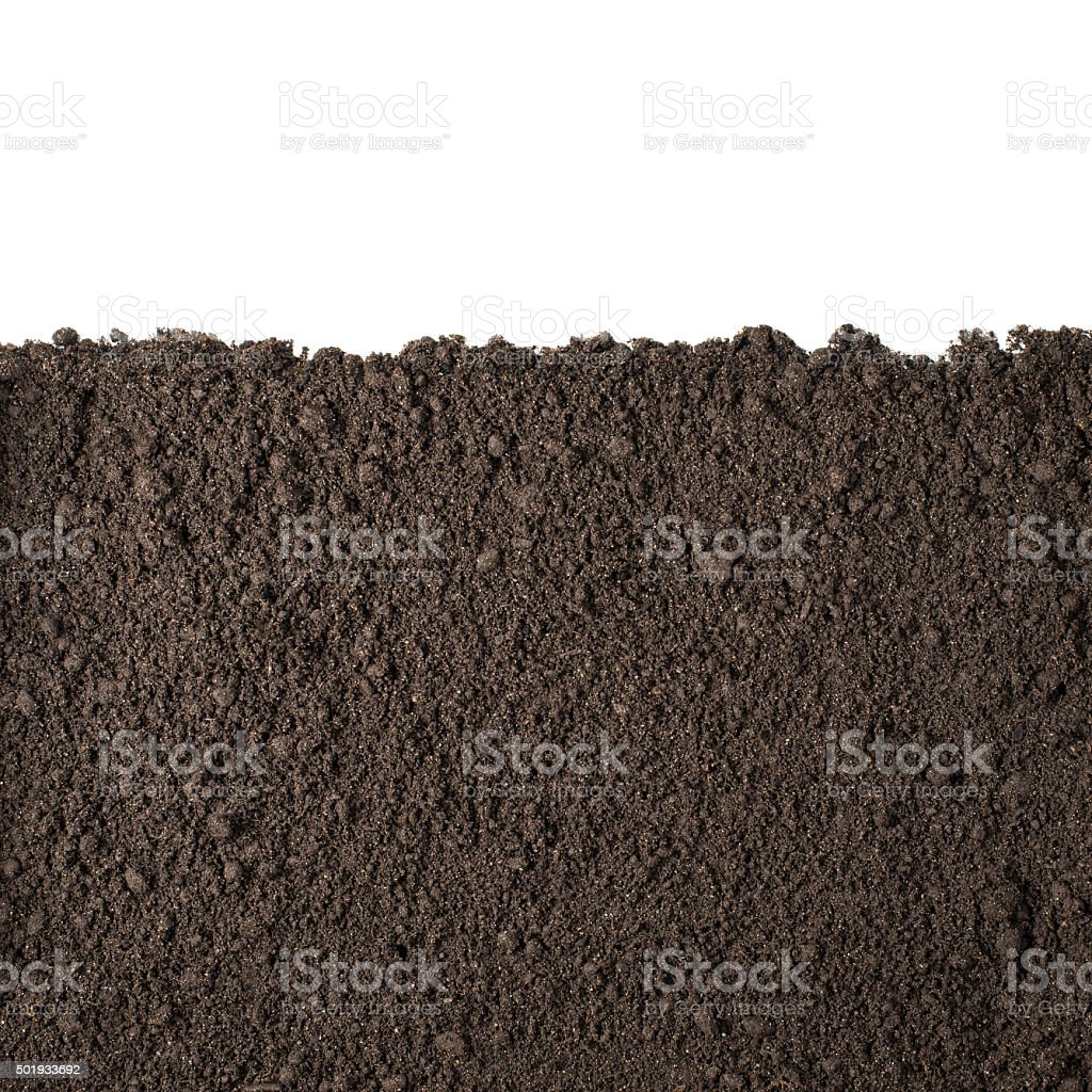Soil section texture isolated on white stock photo