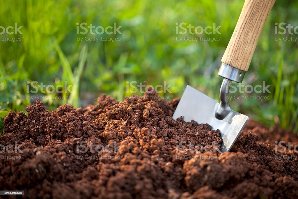 Soil with a garden trowel stock photo