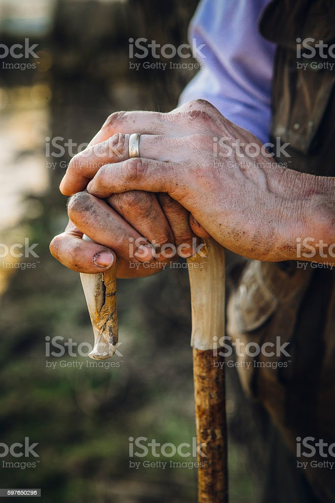 Soiled hands resting on a shepards crook stock photo