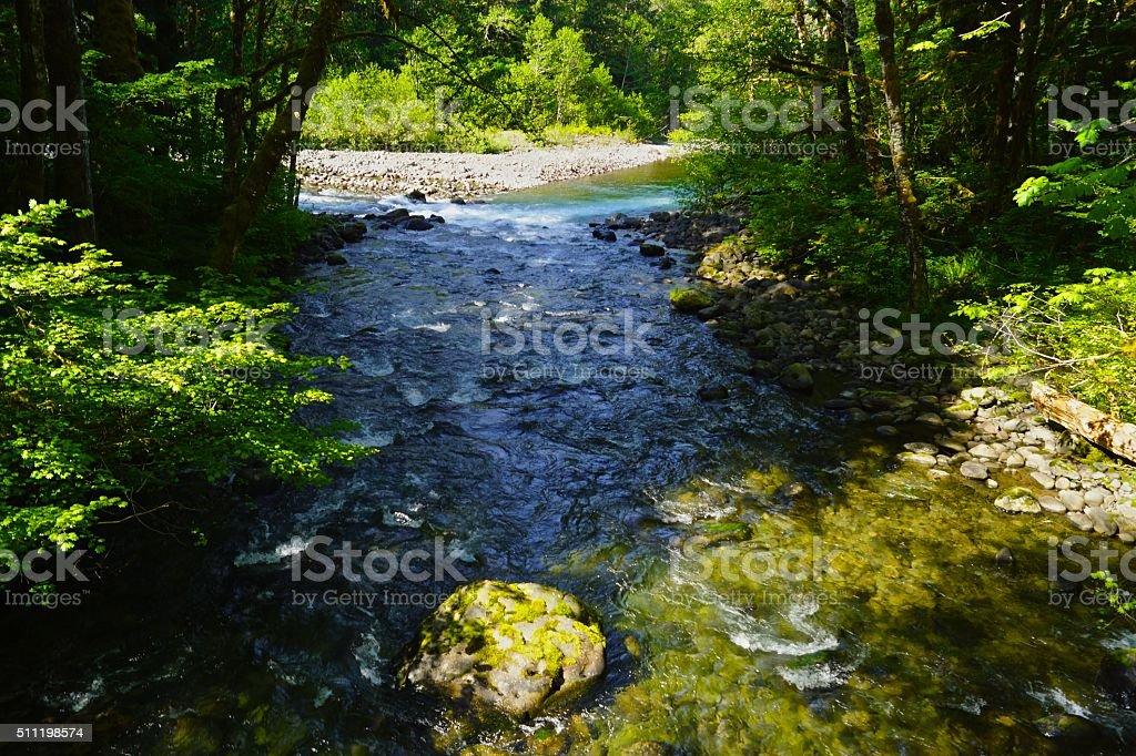 Sol Duc River North stock photo
