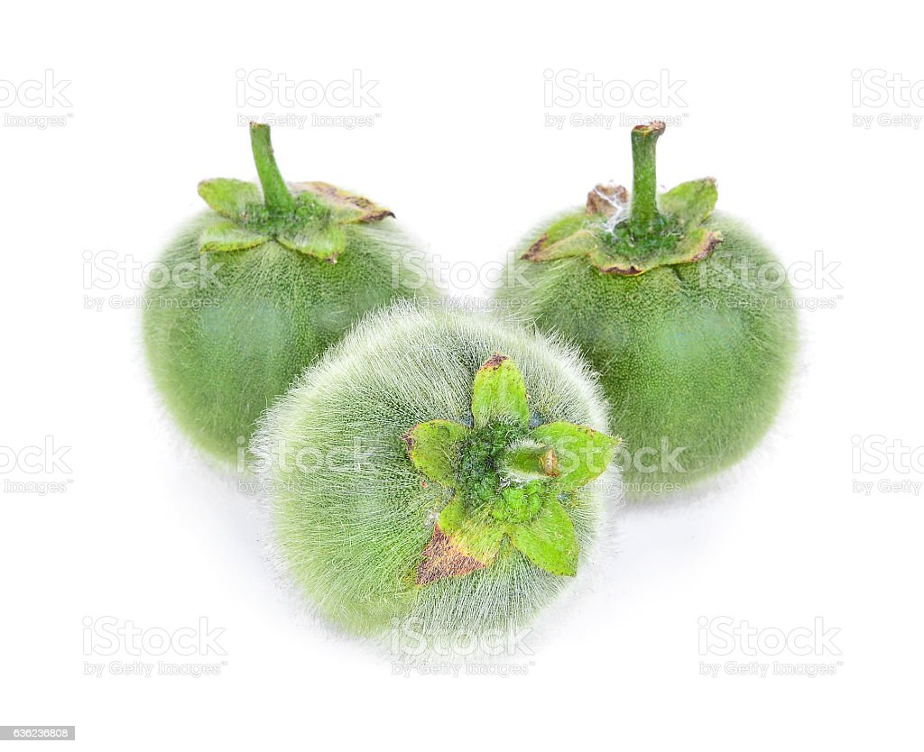 Solanum, Bolo Maka, islated on white background stock photo