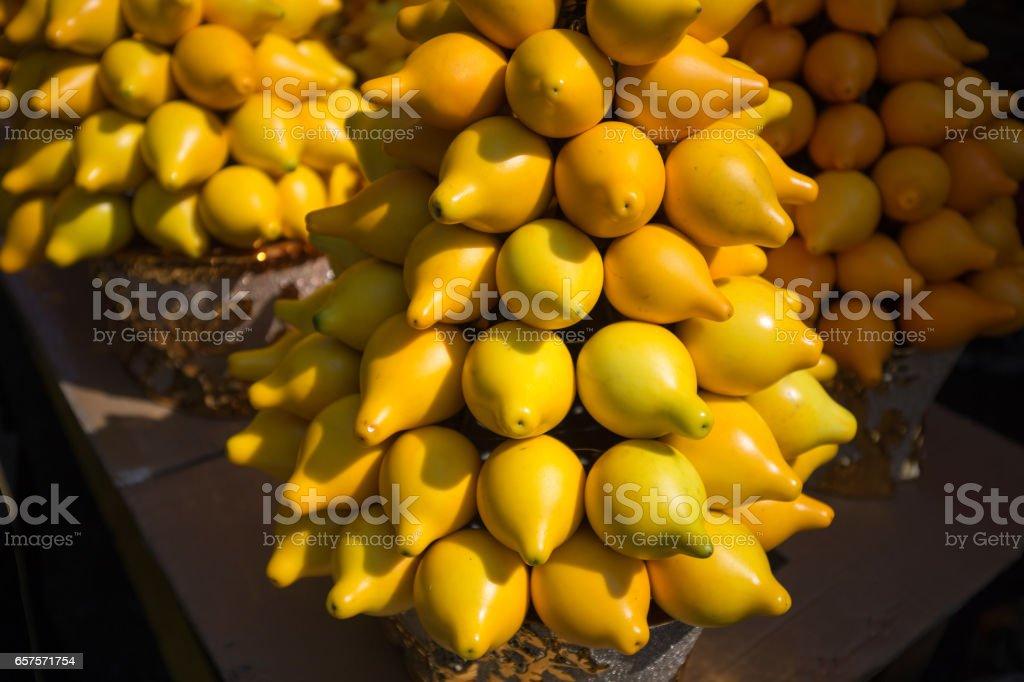 Solanum mammosum stock photo