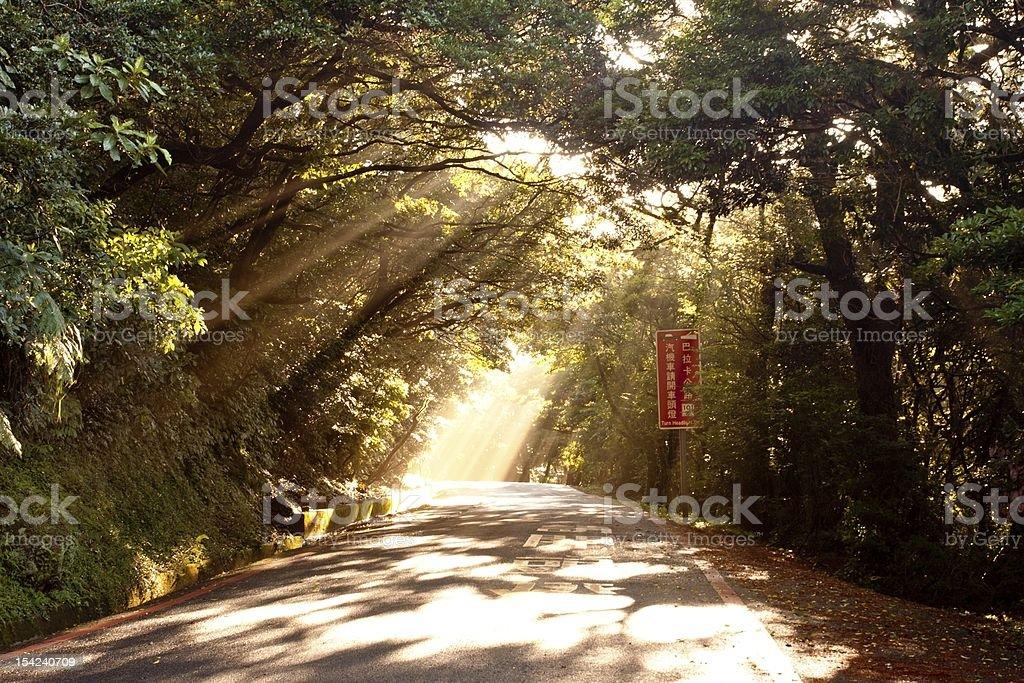 solar beams royalty-free stock photo