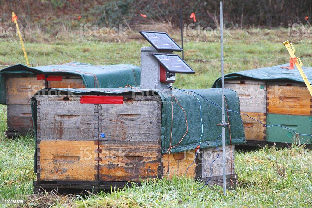 Solar Bee Hive Cooler stock photo