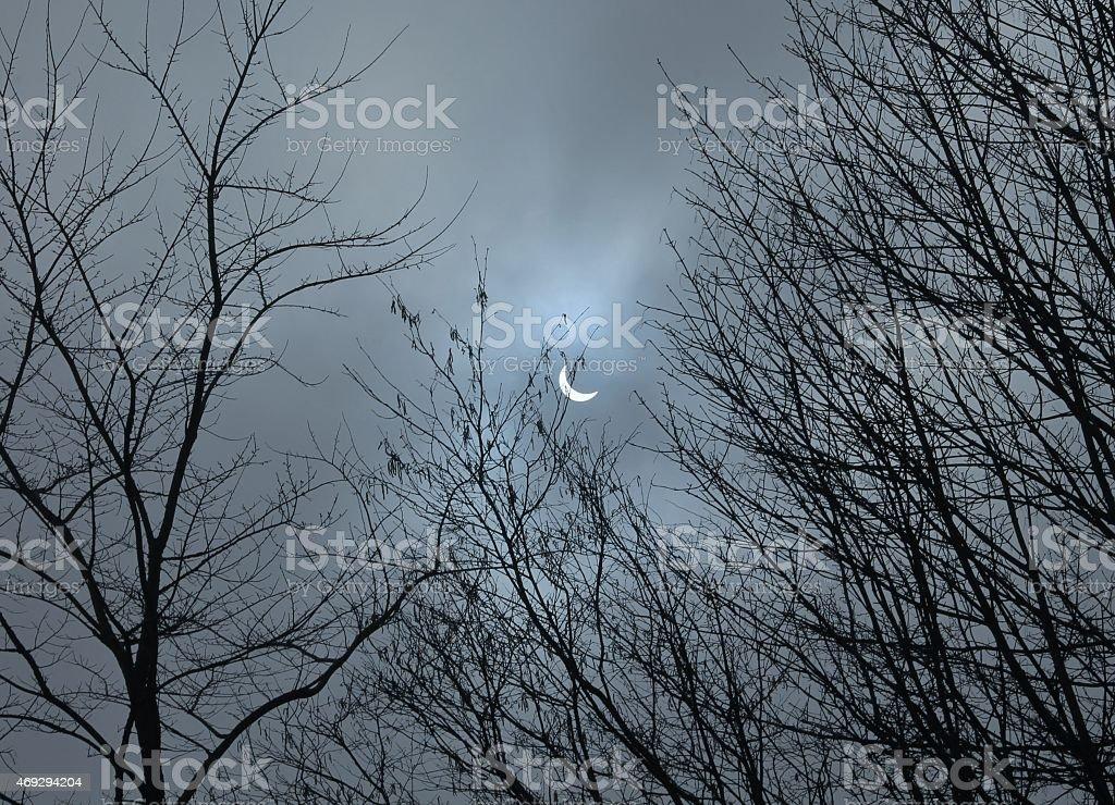 Solar eclipse through the tree line. 2015 stock photo