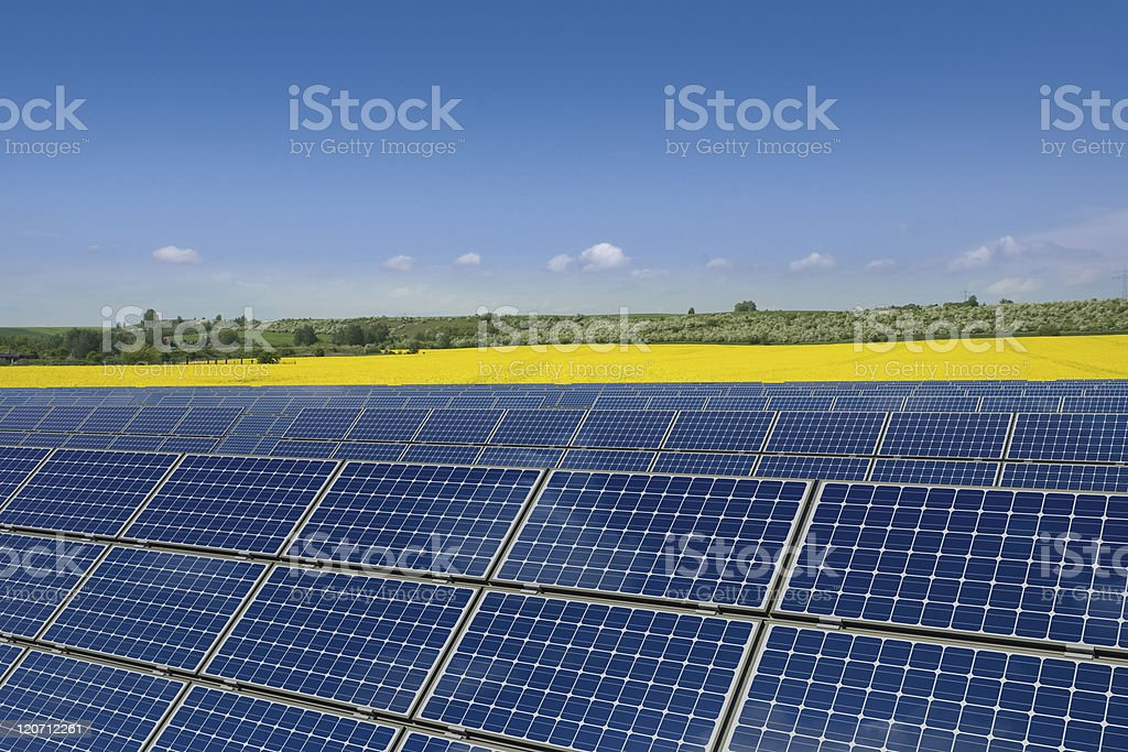 Solar panels against a rapeseed field stock photo