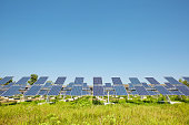 Solar panels. Alternative sources of power. farm.