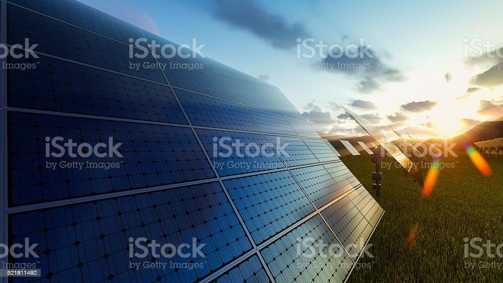 Solar panels field at sunset stock photo