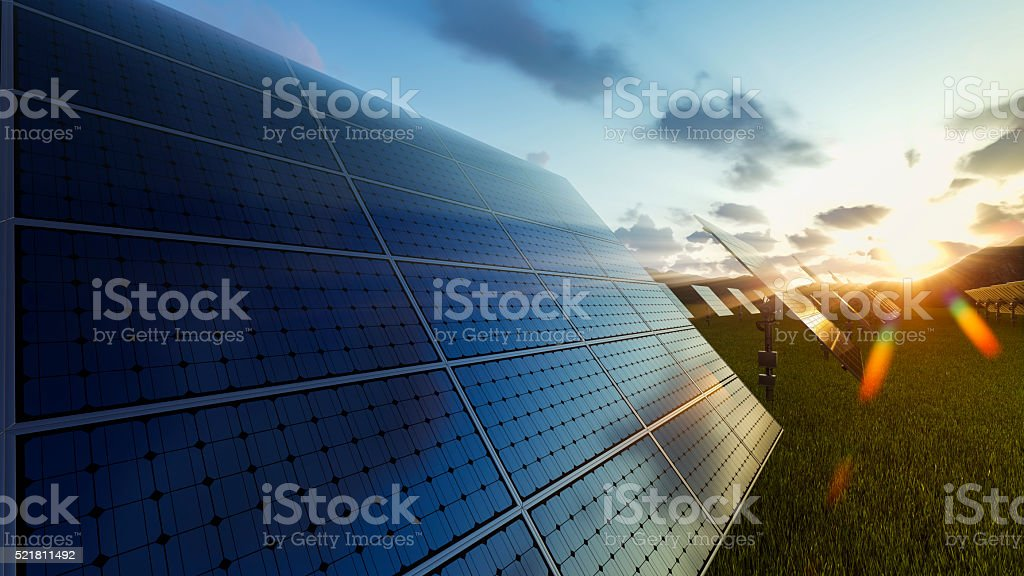 Solar panels field at sunset stock photo