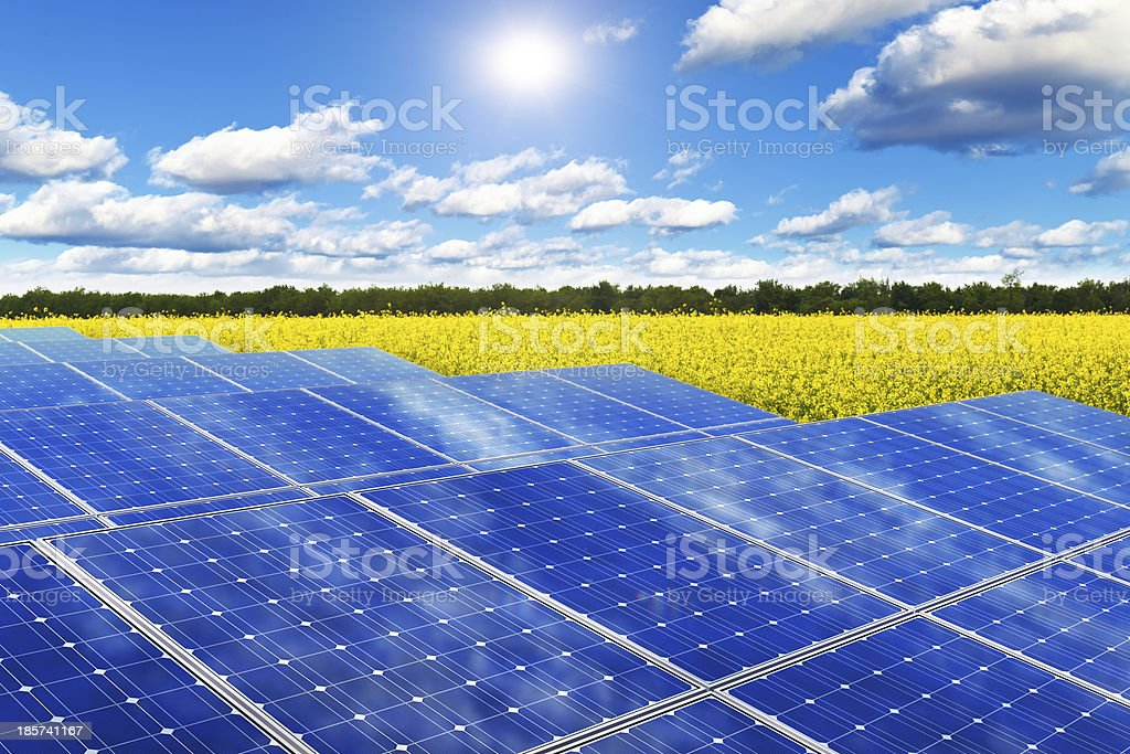Solar panels in rape field stock photo